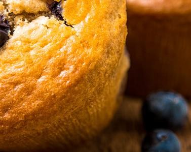 blueberry-muffs
